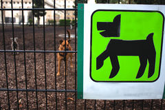 Space for dog owners Royalty Free Stock Photography