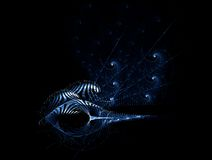 Space fantasy shells, abstract  background Stock Photos