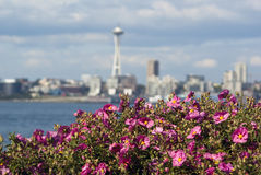 Space Needle blur with flowers in the foreground i Stock Photo