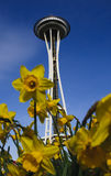 Space Needle with flowers Stock Photo