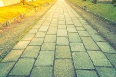 Spacer ścieżka w parku z zieloną trawą (Filtrujący wizerunku pr fotografia stock