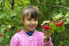 Spacer dziecko w drewnie Zdjęcia Royalty Free