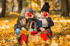 Spacer jesieni park Zdjęcia Royalty Free