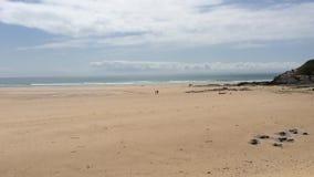 spacer na plaży zdjęcie wideo