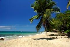 spacer na plaży Obrazy Stock