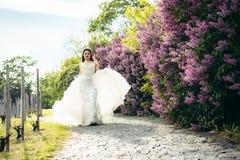 Spacer powabna panna młoda bawić się z ślubną suknią Chodzi wzdłuż brukowych drogowych pobliskich liliac krzaków Obraz Stock