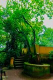 Spacer przez spektakularnego, obfitolistnego i zielonego ogródu botanicznego Gijà ³ n jeden Sierpniowy popołudnie w 2018, zdjęcia stock