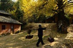 Spacer przez wioski głowy Zdjęcia Stock