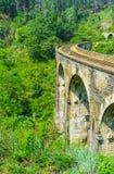 Spacer w dżungli Sri Lanka Obraz Stock