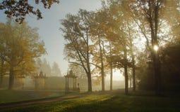 Spacer w jesień parku Zdjęcia Royalty Free