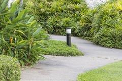 Spacer w pięknym ogródzie wypełniał z drzewami Obrazy Stock