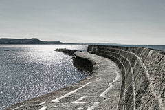 Spacer Wzdłuż Cobb | Lyme Regis zdjęcie stock