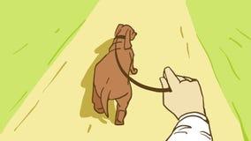 Spacer Z psem W parku Obraz Stock
