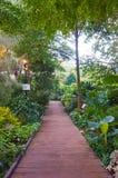 Spaceru ślad prowadzi uprawiać ogródek Fotografia Royalty Free