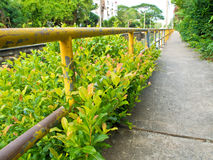 Spaceru sposób wzdłuż drenażowego kanału Fotografia Stock