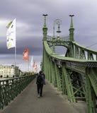 Spacerujący wzdłuż Budapest wolności mostu z swój osobliwie zielonymi promieniami nakrywającymi orłami, Węgry obrazy royalty free