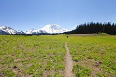 spacery toru Mt Rainer, Waszyngton Obrazy Royalty Free