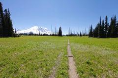 spacery toru Mt Rainer, Waszyngton Fotografia Stock