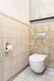 Spacious apartment - Toilet. In bathroom with patterned tiles Royalty Free Stock Photography