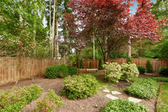 Spacious backyard with fence. Royalty Free Stock Photo