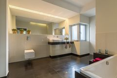 Spacious bathroom designed with style. Spacious bathroom with bath designed with style and elegance stock image