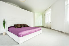 Spacious bed in elegant bedroom Royalty Free Stock Photography