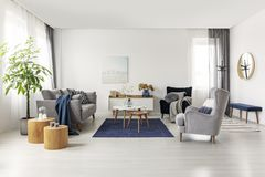 Spacious grey and navy blue scandinavian living room interior.  stock photography