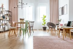 Spacious interior with pink drapes. Wooden table on pink rug and mint and grey chair in spacious interior with drapes and plant Stock Image
