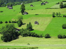 Alpine countryside green living Royalty Free Stock Photos
