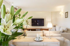 Spacious living room with flowers Royalty Free Stock Images