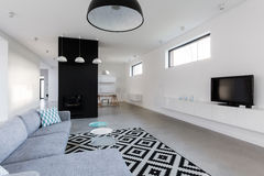 Spacious living room. Spacious modern living room with fancy black and white carpet Stock Photos