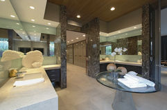 Spacious Mirrored Bathroom In Home Stock Images