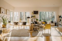 Spacious and natural living and dining room interior with a cozy. Gray sofa and framed posters on white walls. Real photo royalty free stock images