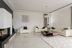 Spacious snobbish living room. In modern black and white desing royalty free stock images