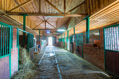 Spacious stables empty building Stock Images