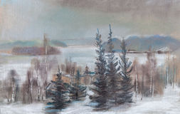 View oof lake in the winter. Spacious view  of lake, distances, fur-trees Royalty Free Stock Photo