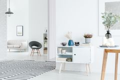 Spacious white apartment interior. Heather on cupboard in spacious white apartment interior with striped carpet and grey chair Stock Images