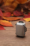 Spadać bagaż na drewnianej desce i liście Jesieni wycieczki pojęcie Zdjęcie Royalty Free