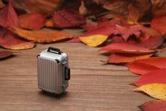 Spadać bagaż na drewnianej desce i liście Jesieni wycieczki pojęcie Zdjęcia Royalty Free