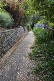 Spadać lato liście wykładają zmierzchu ślad w Berkley, CA fotografia stock
