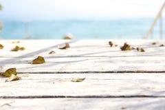 Spadać liście na białej desce Zdjęcia Stock