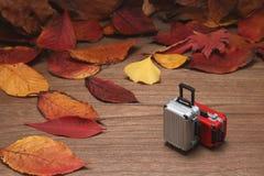 Spadać luggages na drewnianej desce i liście Jesieni wycieczki pojęcie Fotografia Stock