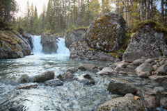 spadać strumienia północny drewno Fotografia Royalty Free