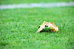 Spadać urlop na boisko do piłki nożnej Obraz Stock