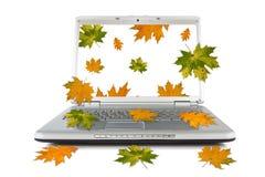 Spadać z komputeru jesienni liść Obraz Royalty Free
