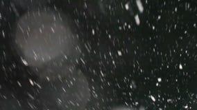 Spada śnieg przy czarnym tłem zdjęcie wideo