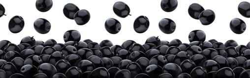 Spada czarne oliwki odizolowywać na białym tle, rozsypisko czarne kiszone oliwki, bezszwowy wzór zdjęcie stock