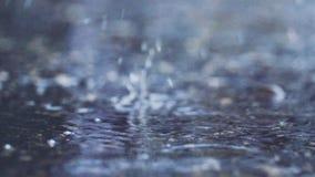 Spada deszczu krople i woda bąble zbiory wideo