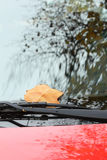 Spadać jesień liść na czerwonym samochodowym okno Zdjęcie Stock