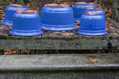 Spada liście wokoło błękitnych oszklonych ceramicznych garnków obrazy stock